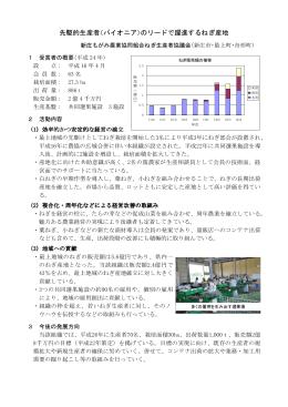 先駆的生産者(パイオニア)のリードで躍進するねぎ産地(PDF、113KB)