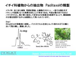 イチイ科植物からの抽出物 Paclitaxelの精製