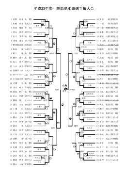 平成23年度 群馬県柔道選手権大会
