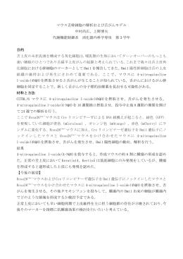 マウス舌幹細胞の解析および舌がんモデル 中村尚広、上野博夫 代謝