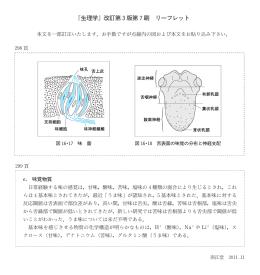 『生理学』改訂第3版第7刷 リーフレット