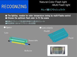 Natural-Color Flash light - Stanley Electronic Components