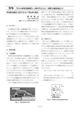 ROBOMEC 2013 in TSUKUBA