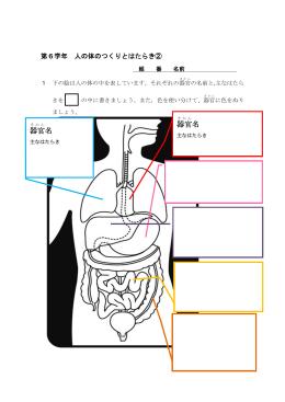 体のつくりとはたらき(2)r603(PDF:192KB)