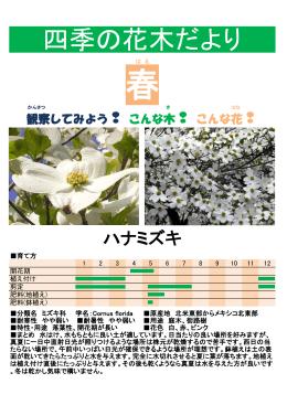四季の花木だより