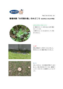 職場体験「氷河期の森」のみどころ(仙台市立八木山中学校)