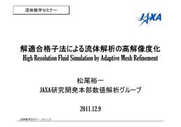 解適合格子法による流体解析の高解像度化 High Resolution Fluid