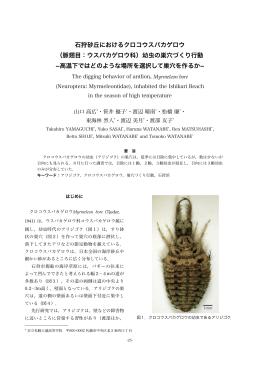 (脈翅目:ウスバカゲロウ科)幼虫の巣穴づくり行動
