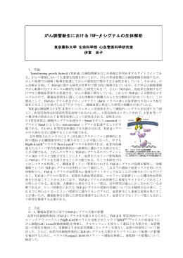 がん脈管新生における TGF