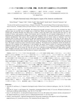 ノトセニア亜目魚種における肝臓,膵臓,消化管