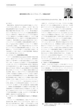 酵母発現系を用いたハイスループット構造生物学(PDF)