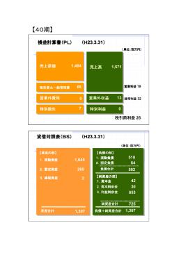 賃借対照表及び損益計算書