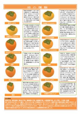 柿 の 種 類