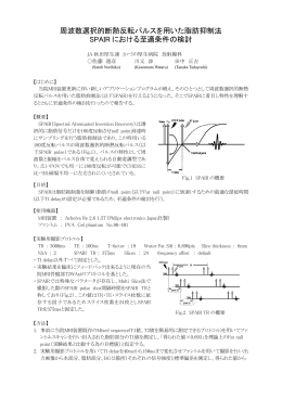 周波数選択的断熱反転パルスを用いた脂肪抑制法 SPAIR における至適
