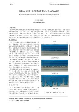 蒸発により発現する密度流の可視化とメカニズムの
