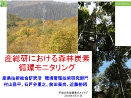 産総研における森林炭素 循環モニタリング