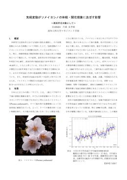 気候変動がソメイヨシノの休眠・開花現象に及ぼす影響