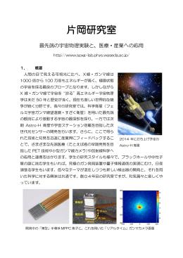 早稲田大学理工学術院総合研究所片岡研究室