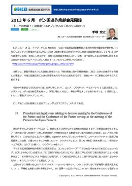2013 年 6 月 ボン国連作業部会見聞録