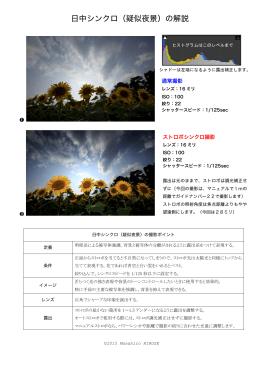 日中シンクロ(疑似夜景)の解説