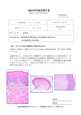 臨床材料検査報告書 病理組織診断 Irritation fibroma of palatal mucosa,