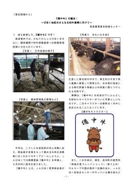 -1- 〔普及現場から〕 『備中牛』の誕生! ~びほく地区のさらなる和牛振興