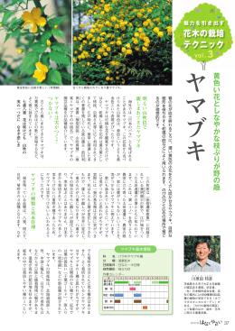 花木の栽培 テクニック 3