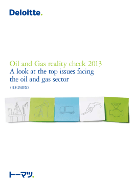 Oil and Gas reality check 2013 A look at the top issues
