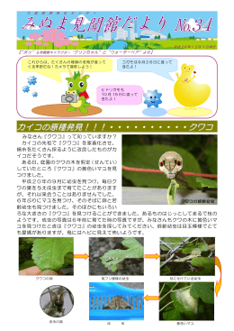 みぬま見聞館だより 第34号(PDF形式:964KB)