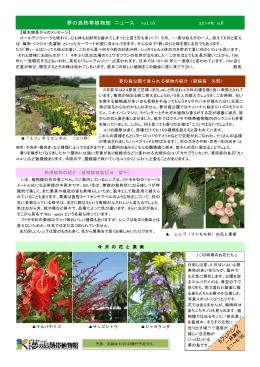 夢の島熱帯植物館 ニュース vol.16