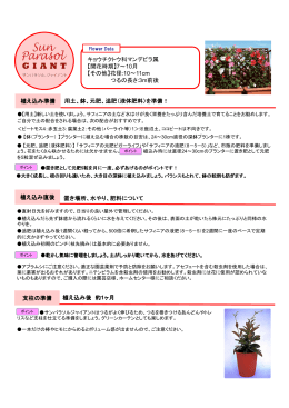 532KB PDF - SUNTORY FLOWERS For Business