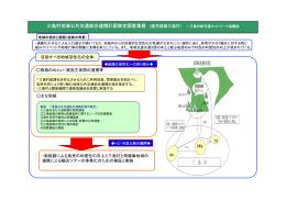 三島村地域公共交通総合連携計画策定調査業務 (鹿児島県三島村