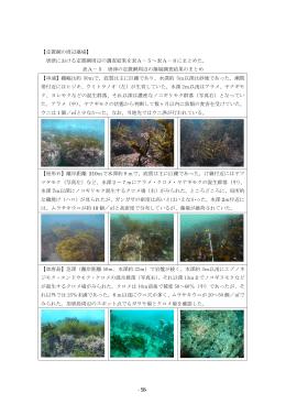 【定置網の周辺藻場】 唐津における定置網周辺の調査結果
