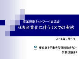 東京海上日動火災保険資料(PDF:1337KB)