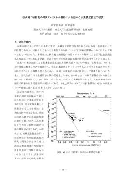 核共鳴 X 線散乱の時間スペクトル解析による鉄中の