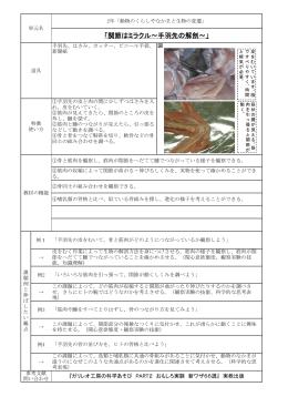 49 面白実験集_手羽先の解剖