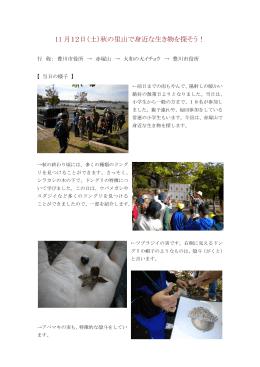 赤塚山 平成23年11月12日開催(一般向け)(PDF:376KB)