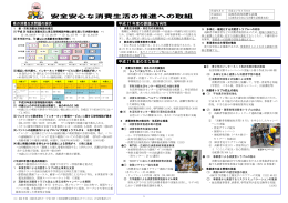 安全安心な消費生活の推進への取組(PDF:1138KB)