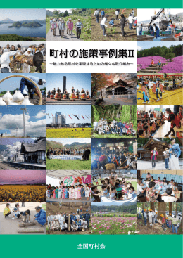 「町村の施策事例集Ⅱ」(全体版)(pdf・16MB)
