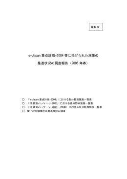 e-Japan 重点計画-2004 等に掲げられた施策の 推進状況の調査報告