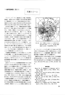 グロスペッタ ラーゲン,還流型などと同義- 準定常性, 持続性, 再帰性の