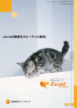 Excat for Javaパンフレット