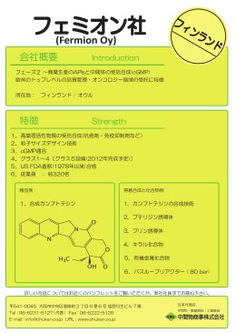 フェミオンOy社 ポスター