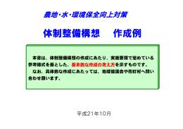 体制整備構想作成例(761KB)