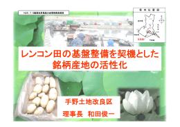 レンコン田の基盤整備を契機とした 銘柄産地の活性化