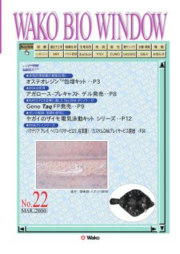 No. 22 - 和光純薬工業