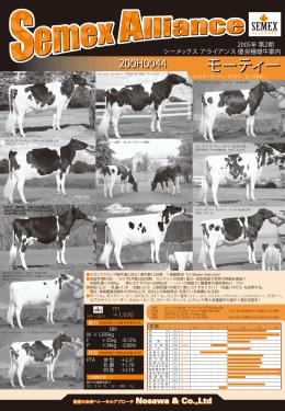 SEMEX 優良種雄牛案内 2005年08月