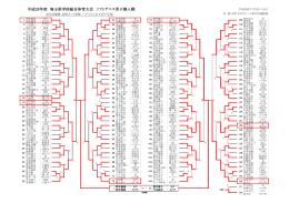 平成28年度 埼玉県学校総合体育大会 ソフトテニス男子個人戦